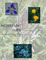 native north texas plants native plant info native plant society of texas houston chapter