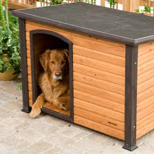 whimsical house plans dog houses small medium large extra and paws whimsical house
