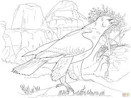 coloring pages of eagles interesting american flag coloring pages