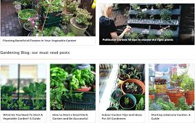 urban gardening blog ideas tips and how to for all level gardeners