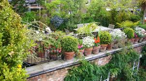 garden ideas urban vegetable garden design with brown small pots