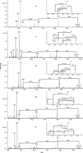 tandem mass spectrometric analysis of a complex triterpene saponin