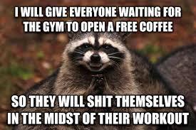 livememe com evil plotting raccoon