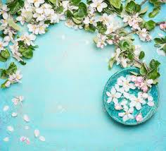 turquoise flowers spa or wellness turquoise background with blossom and water