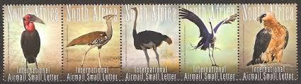 big five of birds 2008
