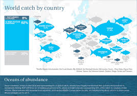 oceans turn the tide of overfishing environmental defense fund