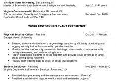 Veteran Resume Examples by Download Two Page Resume Sample Haadyaooverbayresort Com