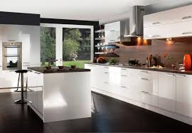 high gloss white kitchen cabinets awesome high gloss white kitchen cabinets riothorseroyale homes