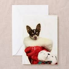 49 best chihuahua lover gifts images on chihuahuas