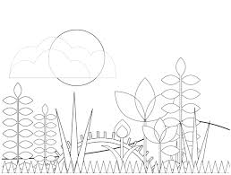 natural wonders a patrick hruby coloring book patrick hruby