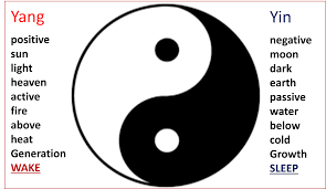 the yin yang of evergreen easton point