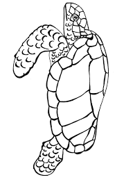 free sea turtle coloring pages printable coloringstar