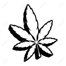 White Flag With Green Leaves Marijuana Leaf Images U0026 Stock Pictures Royalty Free Marijuana