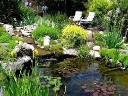 Backyard Pond Building Building A Pond In Your Backyard Media Magazine