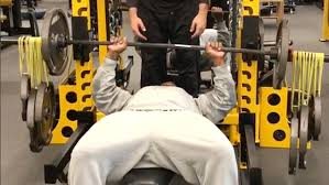 World Bench Press Champion James Harrison Celebrates Setting Steelers Sack Record With Crazy