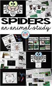 4760 best first grade science and social studies images on