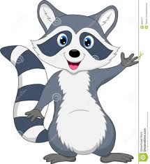 cartoon raccoon drawings draw a cartoon raccoon art projects for