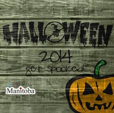 pumpkins corn mazes and halloween 2014