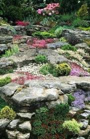 Diy Rock Garden Diy Rock Garden Alpine Rock Garden With Low Growing Ground Cover
