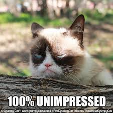Grumpy Cat No Memes - grumpy cat on twitter grumpycat 100 unimpressed http t co