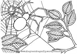 Spider Web Coloring Sheet The Green Dragonfly Spider Web Coloring Page