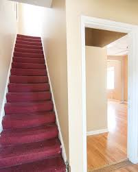 what color carpet goes best with pink walls carpet vidalondon