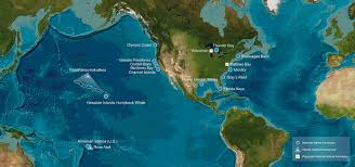 Coral Reef Map Of The World by For Students Flower Garden Banks National Marine Sanctuary