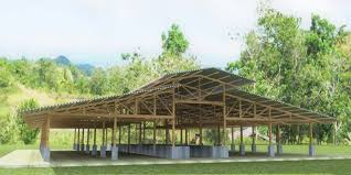 pagador designs architecture and engineers cattle house design