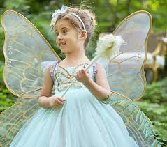Fairy Costumes Butterfly Fairy Costume Mint Pottery Barn Kids