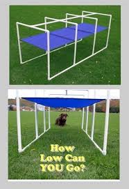 Backyard Agility Course 13 Best Dog Agility Yard Images On Pinterest Dog Agility