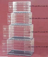 rete metallica per gabbie tecnomediana per i nostri gatti