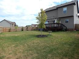view of large fenced in backyard with two gates for easy access