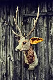 deer head deer head erin carola van dyke