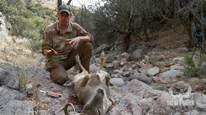 steven rinella gives a step by step account of how to field dress
