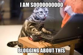 Monday Cat Meme - meme monday so i had a baby