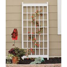diamond teak wood wall trellis hayneedle