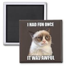 Grumpy Cat Meme I Had Fun Once - cat meme refrigerator magnets zazzle