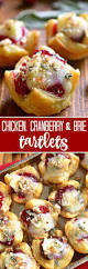 quick u0026 easy christmas appetizers recipes on pinterest