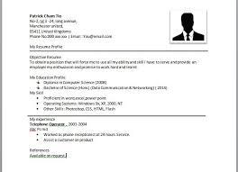 Resume Examples Microsoft Word Free Simple Resume Templates 7 Engineering Resume Template Free