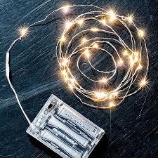 40 bulb led light strand for sale at jackson and perkins