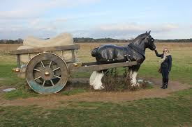 stunning shire sculpture in the suffolk countryside
