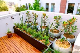 Types Of Vegetable Gardening by Small Space Container Gardening With Types Of Vegetables The