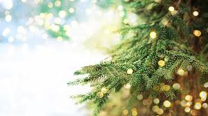 tree lights wallpaper artificial out led