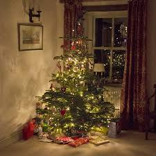 led pre lit tree tree with led lights inside