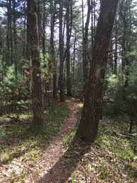 Harold Parker State Forest Map by Woodchuck Hill U2014 North Andover Trails