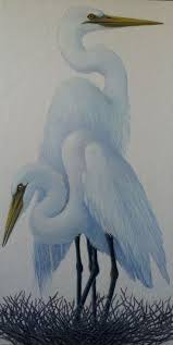 434 best new pro ref images on pinterest blue heron herons and