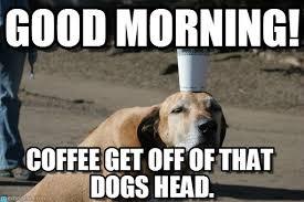 Saturday Morning Memes - good morning dog and coffee meme on memegen