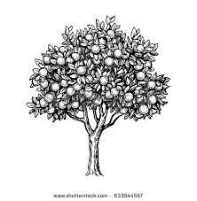 vector illustration orange tree stock vector 633044597