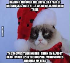 Merry Christmas Cat Meme - me merry christmas grumpy cat grumpy cat what s so merry about it