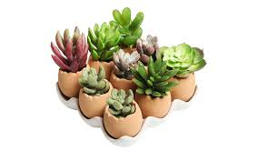 small planter the best small planters we found to pot and hold your succulents spy